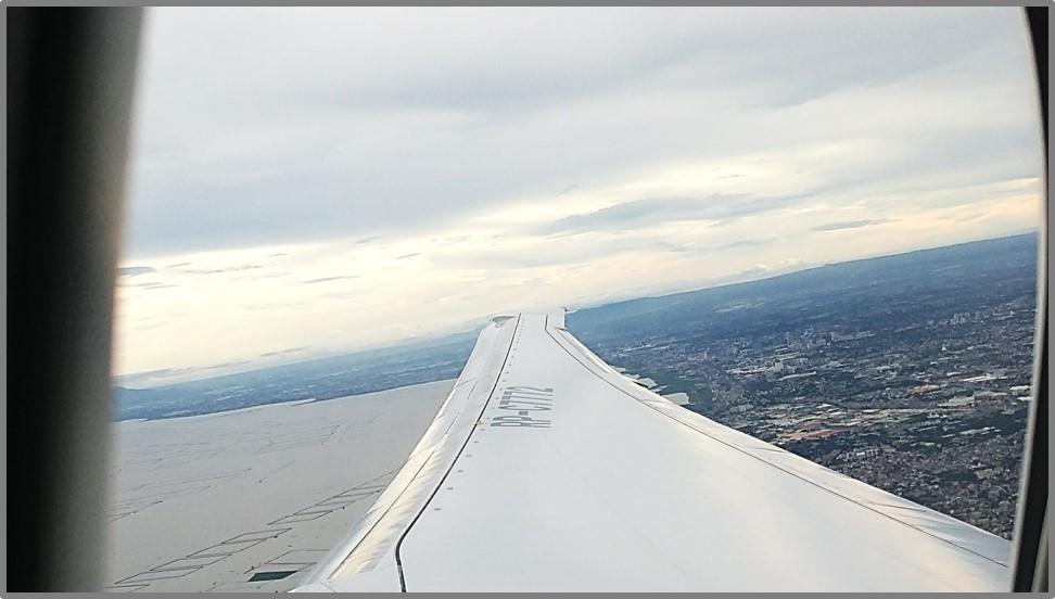 wing_photo